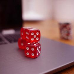 Zebra Wins to Launch New Online Casino